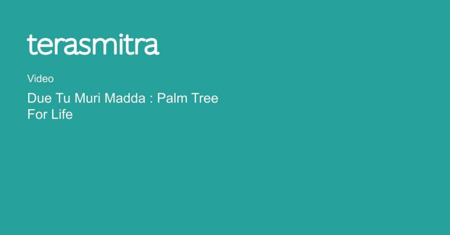 due-tu-muri-madda-palm-tree-for-life