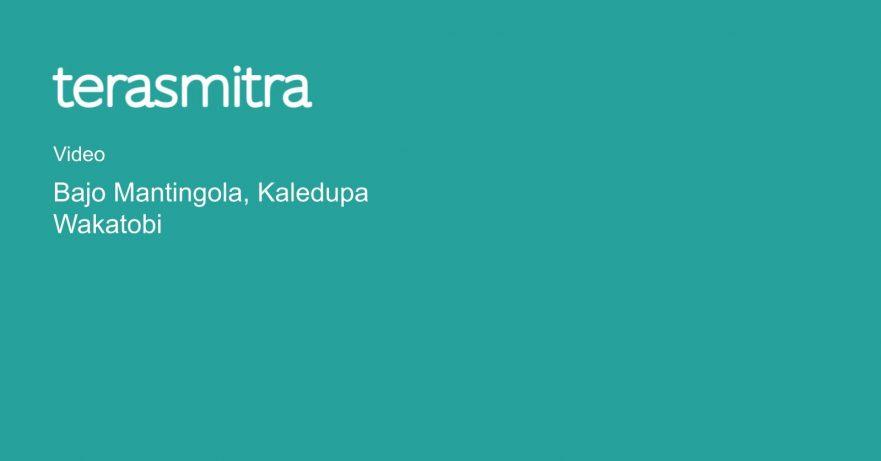 bajo-mantingola-kaledupa-wakatobi