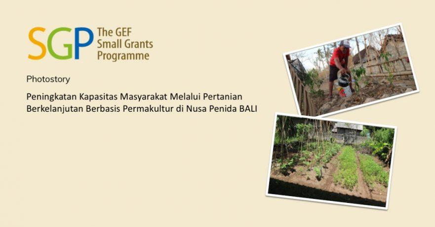 Peningkatan Kapasitas Masyarakat Melalui Pertanian Berkelanjutan Berbasis Permakultur di Nusa Penida BALI