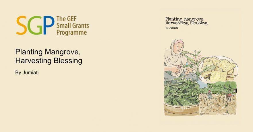 Planting Mangrove, Harvesting Blessing